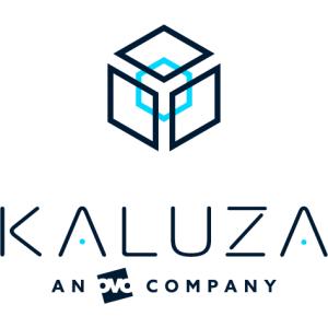 Kaluza software